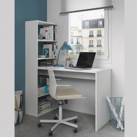 Mesa + estantería